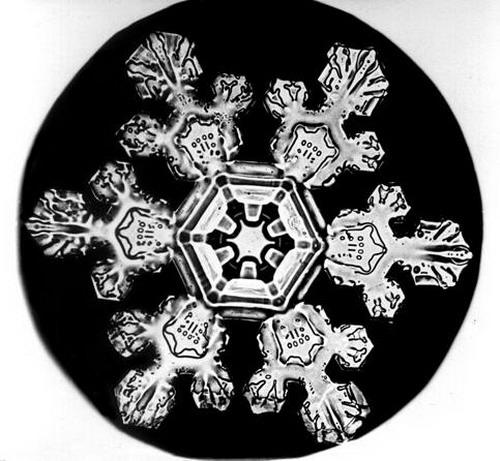 Bentley_Snowflake05