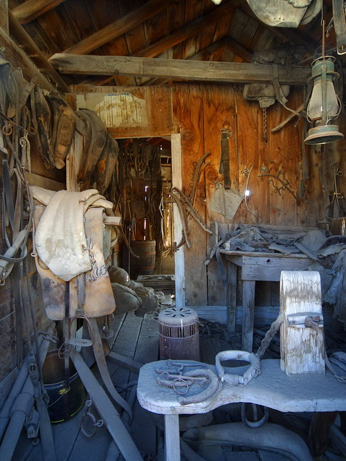 Bodie Stables