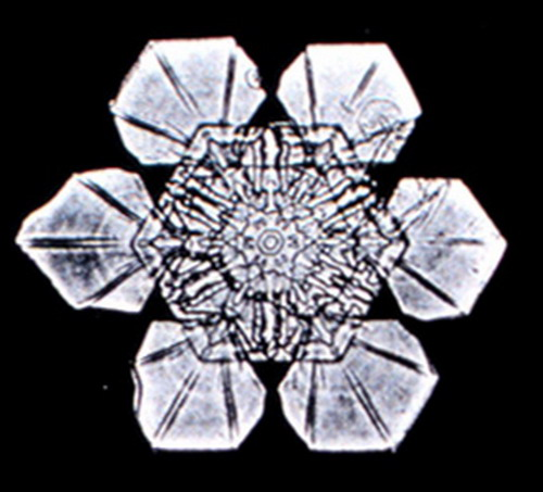 Bentley_Snowflake11