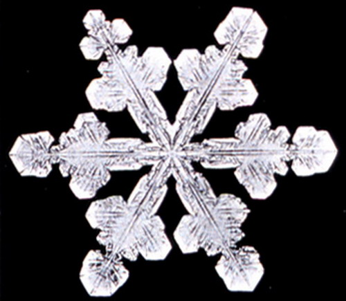 Bentley_Snowflake15