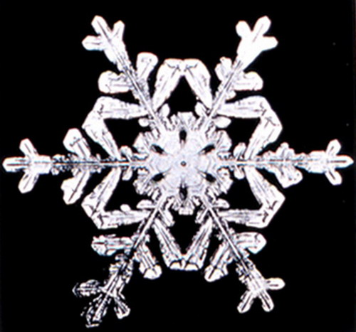 Bentley_Snowflake12
