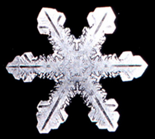 Bentley_Snowflake13
