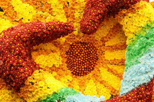 Sunflower made of colorful flowers