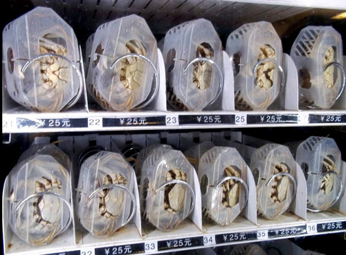 Weird pictures - Crab vending machine in China