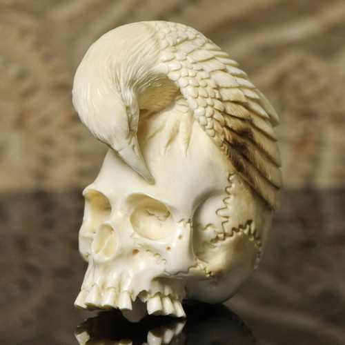 fossil carved human cranium