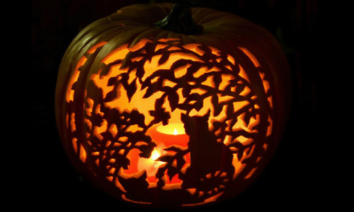 fabulous pumpkin carvings