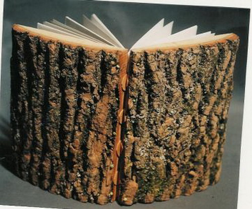 Wood Covered Book : Strange book covers weirdomatic